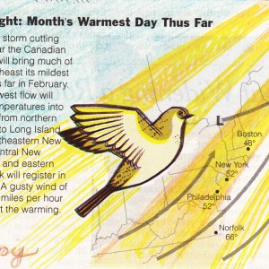 Eileen Ferara, February 14, 2011  In Love with the weather