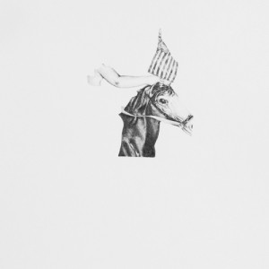 ©Lindsey Muscato: Horse & Flag