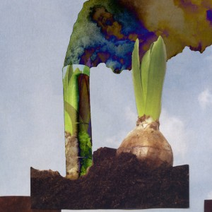 Future Plants?, Collage, © 2011 by Irene Chan