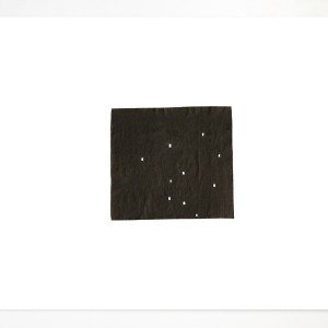 Skye Gilkerson, May 11, 2011, Constellation Study